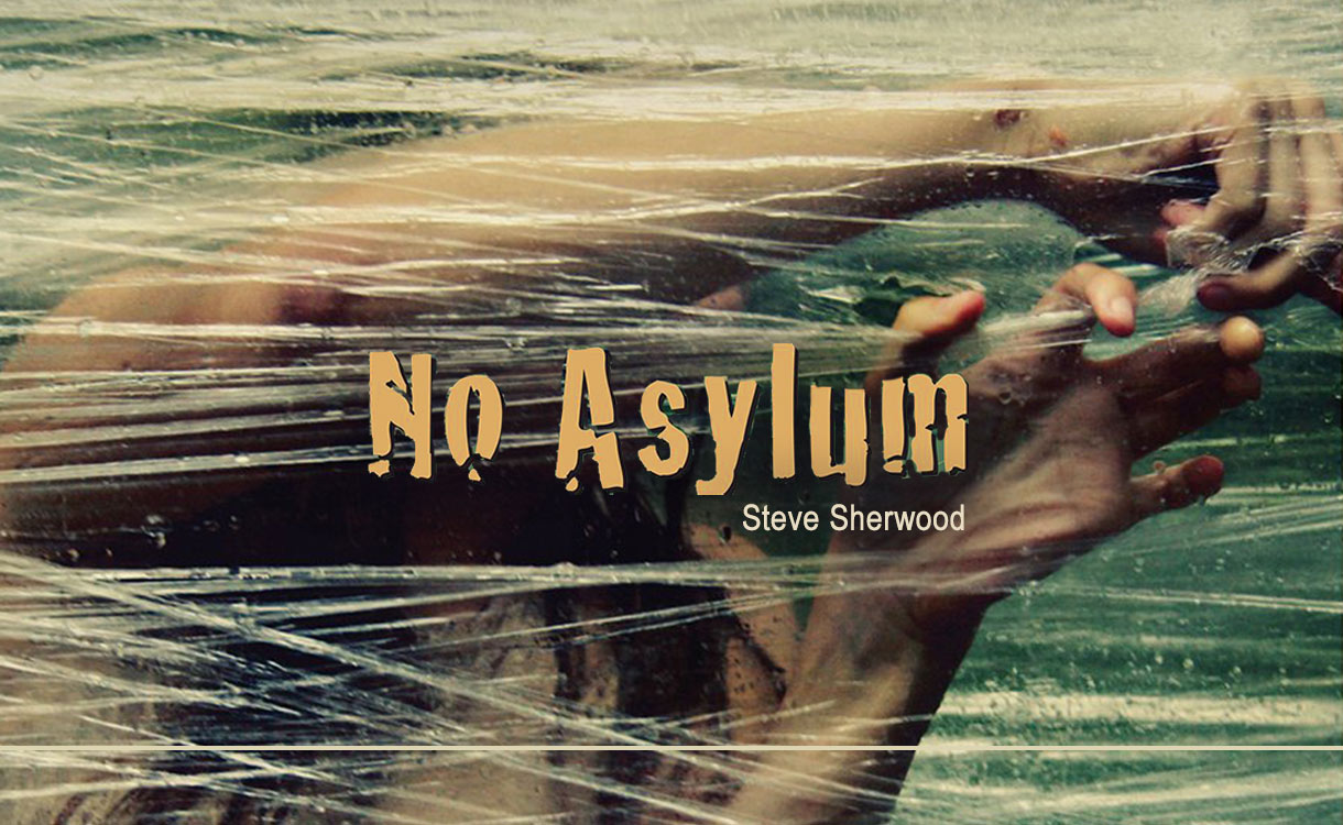 No Asylum book cover