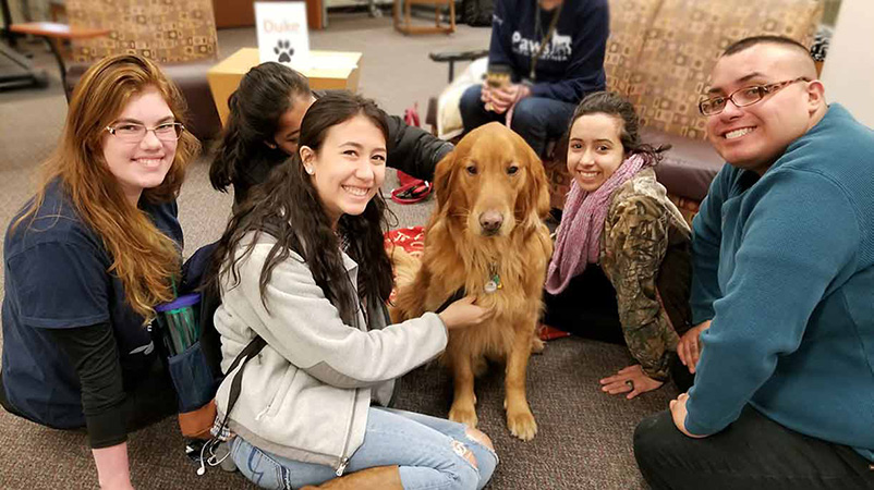 students petting dog at Paws for Partners event