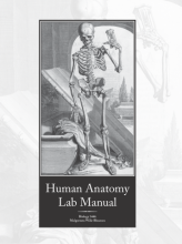Book cover for the UTA open educational resource Human Anatomy Lab Manual